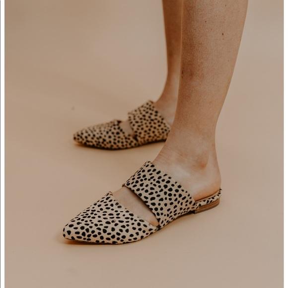 Matisse Shoes   Matisse Berlin Mule